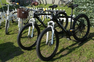 bicicleteada-renault-2